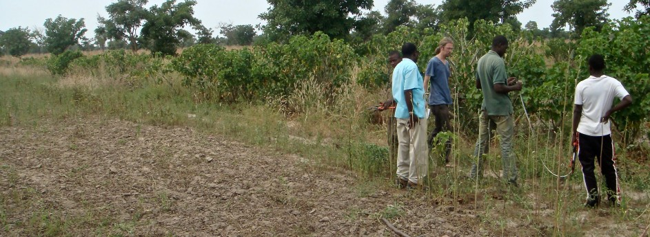 onsite biomass measurements with farmers